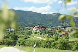 Naturhighlights  im Bayerischen Wald