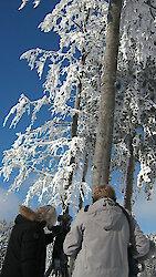 """""""Winter im Bayerischen Wald"""" im BR Fernsehen"""