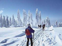 Schneesituation im Bayerischen Wald entspannt sich